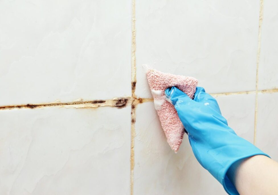 professional tile and grout cleaning